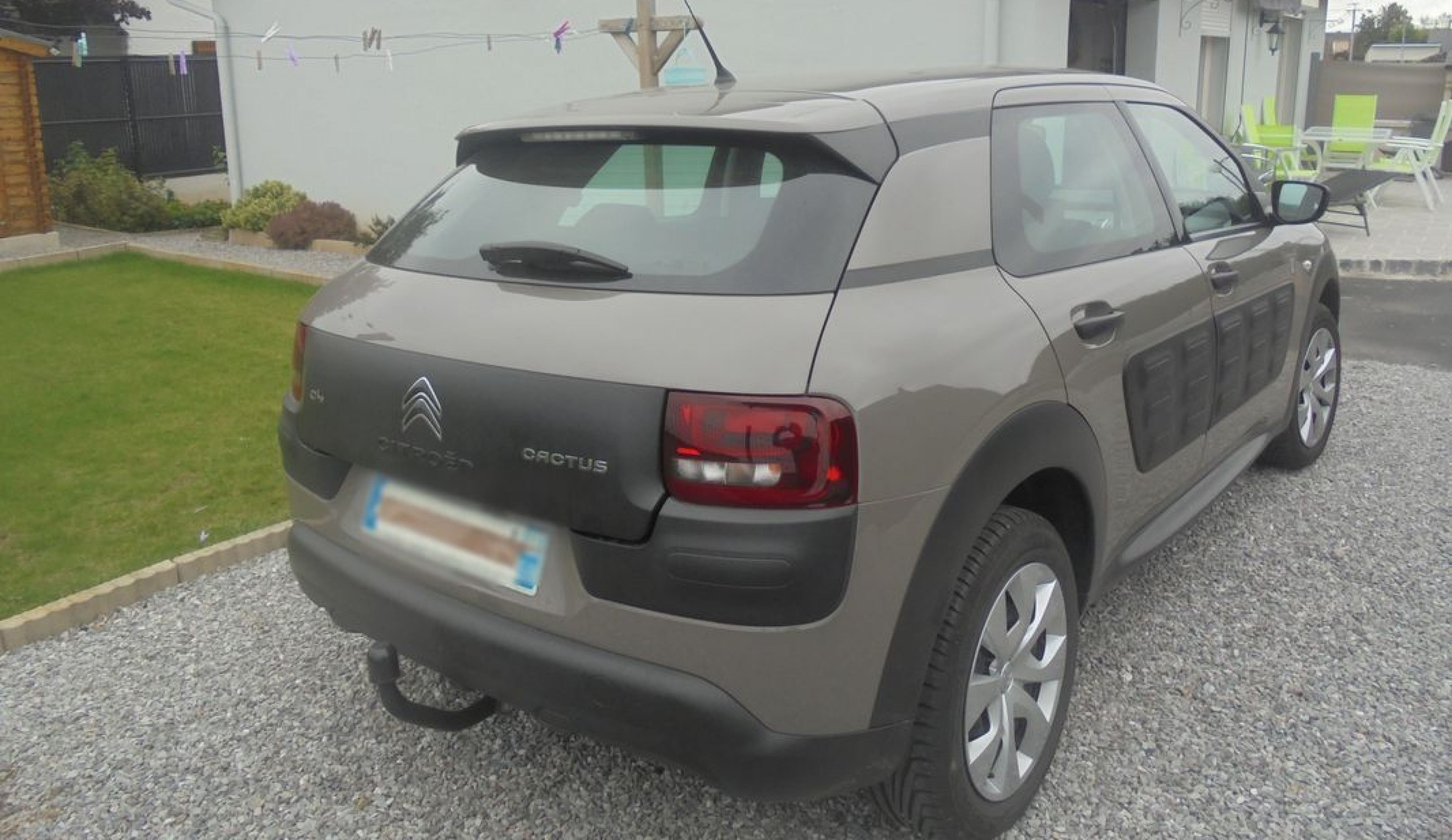 C4 cactus puretech 82 - Photo 2