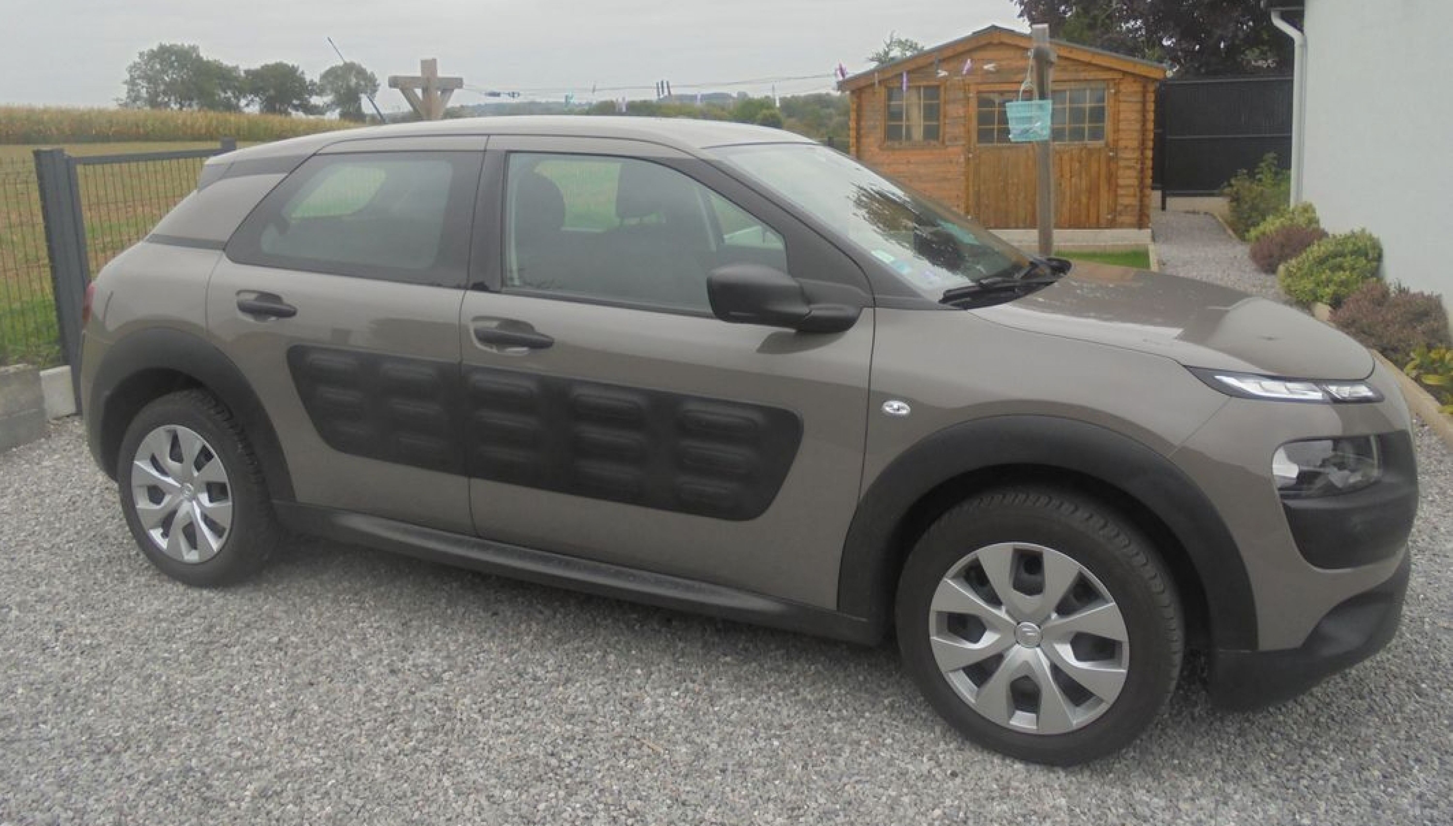 C4 cactus puretech 82 - Photo 3